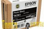 Epson T47A1